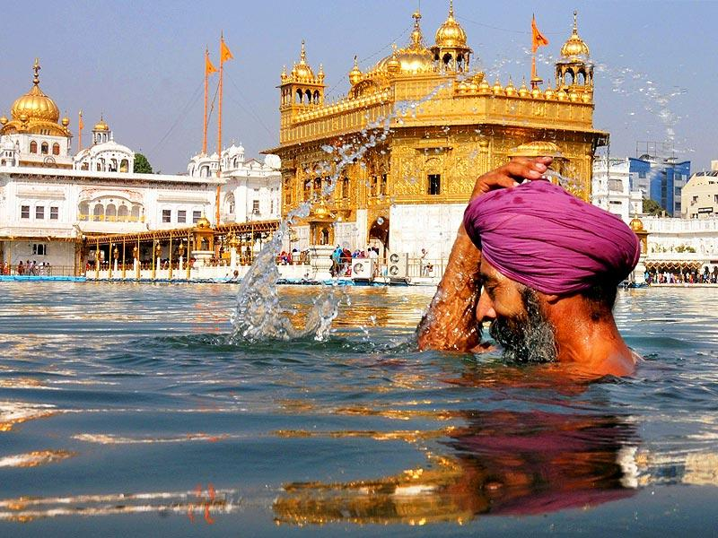 A devotee takes a holy dip in the sarover at Golden temple in Amritsar. (PTI Photo)
