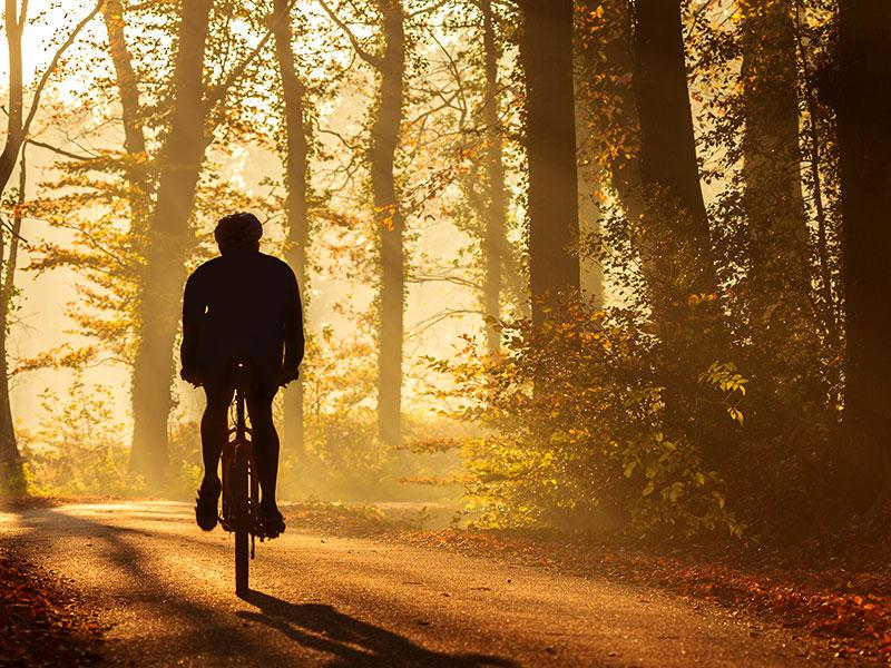 Ride away for good health: Cycling is a fun way to reduce weight. So, if you love nature and breathing in the crisp morning air, hop on a bicycle and get going. You can even do on-the-spot cycling if you feel too lazy to step out.