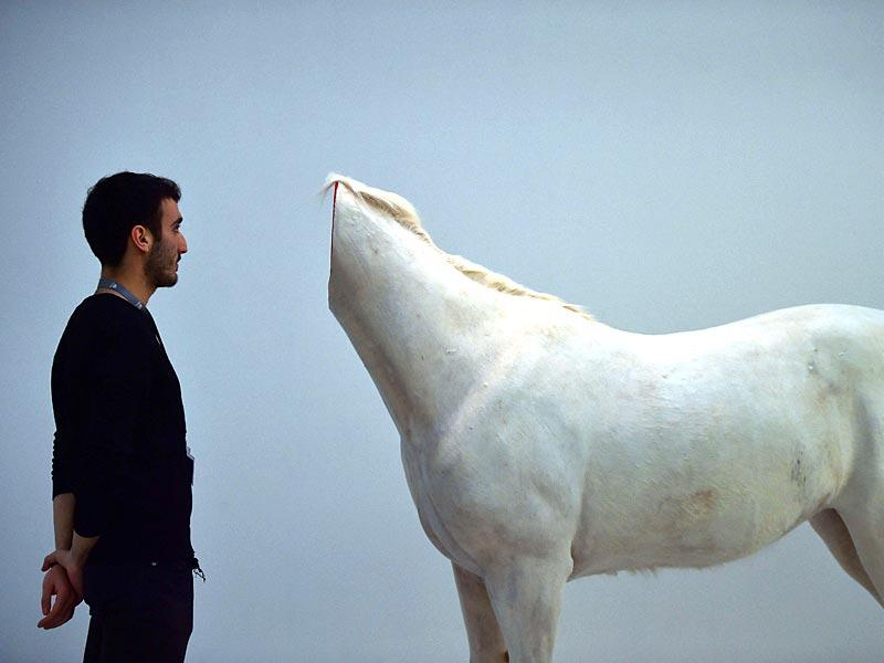 A man looks at a decapitated horse, an art piece by Chinese artist Huang Yong Ping, during a press preview of the exhibition