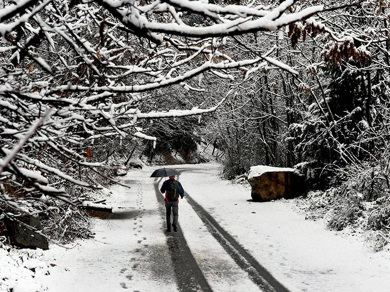 A man walks under an umberalla during snowfall in Srinagar. (PTI photo)