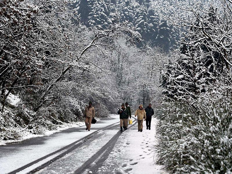 Security jawans patrol a street during snowfall in Srinagar. (PTI photo)
