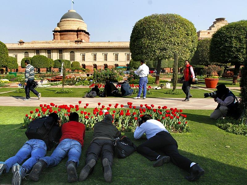 Mughal Gardens will remain open to the public from February 14 to March 15 between 9:30am and 4:30pm. (Virendra Singh Gosain/HT Photo)