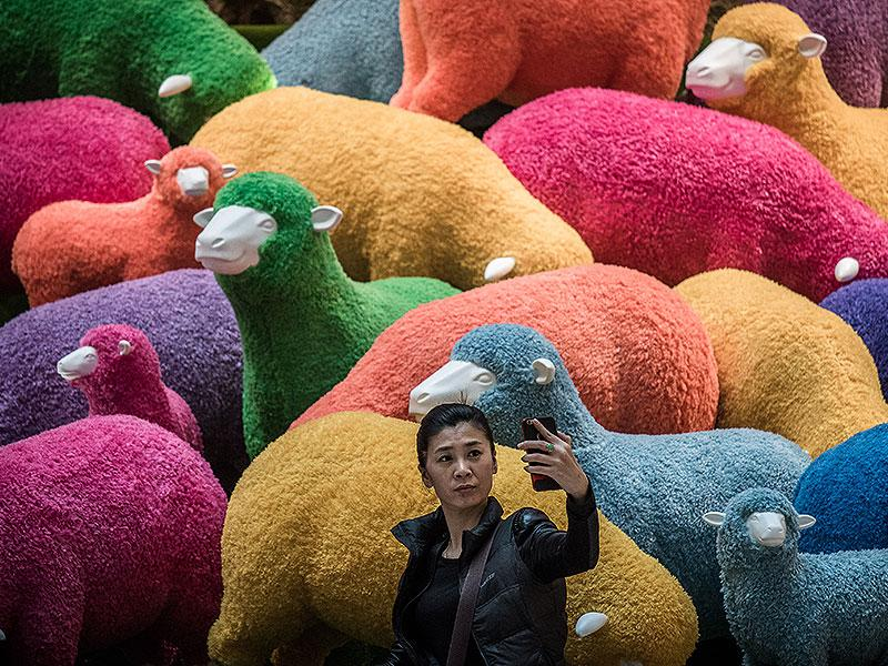Hong Kong: A woman takes a selfie in front of a multi-colored sheep installation displayed in a shopping mall for the Chinese New Year celebrations in Hong Kong on February 18, 2015. The Chinese Lunar New Year of the Sheep began on February 19. (Photo: AFP)