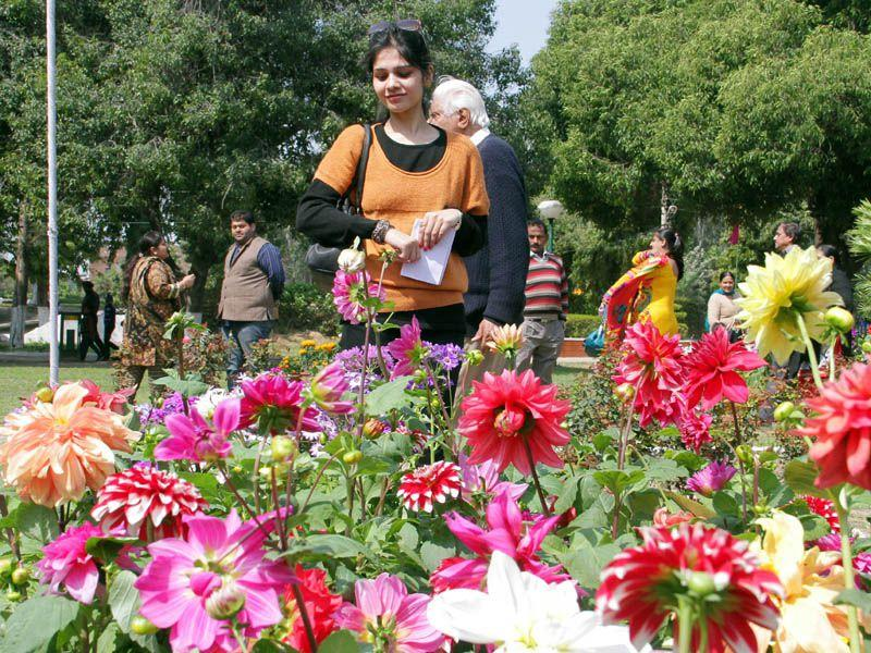 Visitors enjoying flower show at Nehru Rose Garden in Ludhiana. JS Grewal/HT
