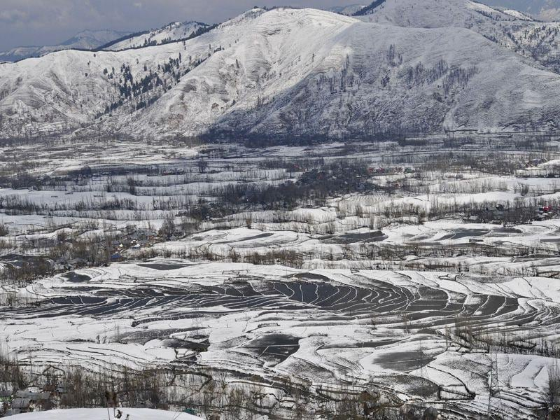 A view of a snow covered paddy field at Lower Munda near Srinagar. Waseem Andrabi/HT