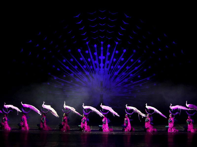 Dancer in peacock costumes perform during the new Golden Mask Dynasty show in Beijing. (Reuters Photo)