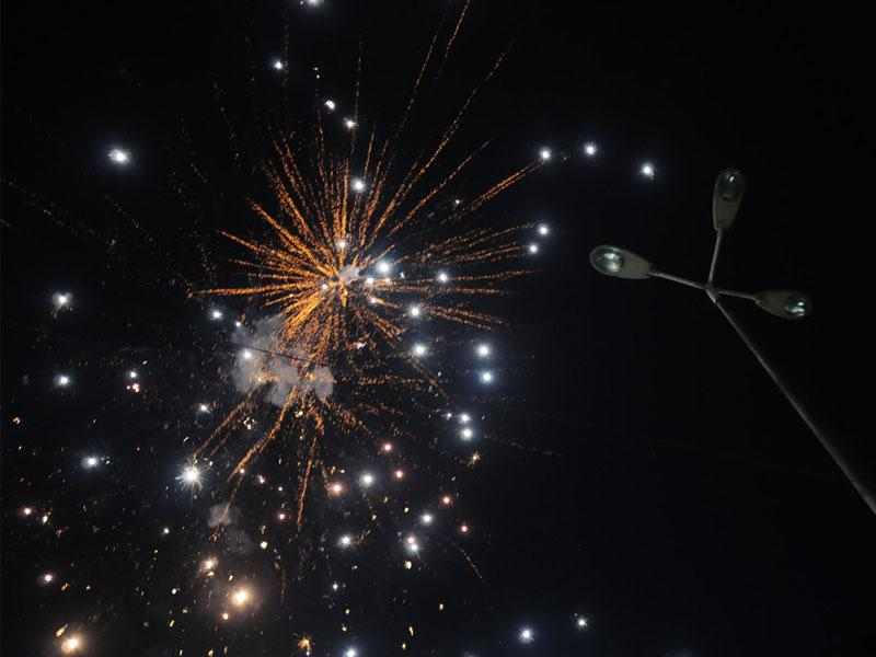 A display of fireworks was organised to celebrate Hindu New Year by social organisation 'Karmshree' in Bhopal on Friday. (Mujeeb Faruqui /HT photo)
