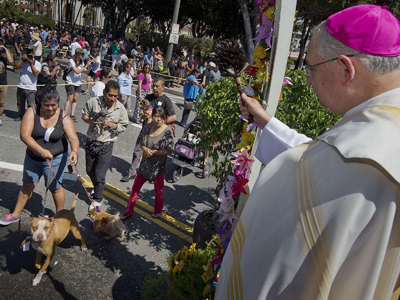 Dogs receive a holy water blessing from Catholic Archbishop Jose H. Gomez during a Blessing of Animals Easter event in Los Angeles, California. (AFP Photo)