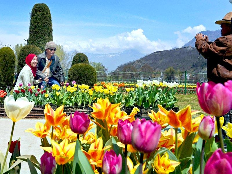 Tourists enjoys at Asia's largest Tulip garden after it was opened for public viewing in Srinagar. (PTI Photo)