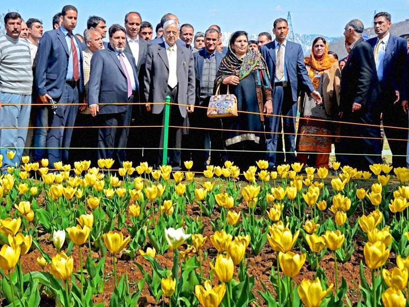 Jammu and Kashmir Chief Minister Mufti Mohammad Sayeed with his wife take a round of Asia's largest Tulip garden after it was opened for public viewing in Srinagar . (PTI Photo)