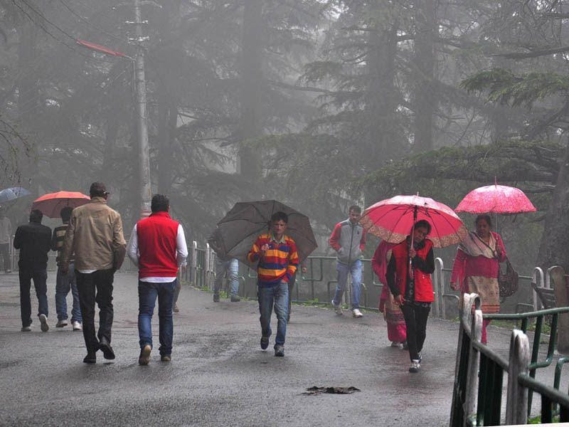 People walking during rainfall in Shimla. Cold wave intensified in the hill state after fresh rainfall. Santosh Rawat/HT