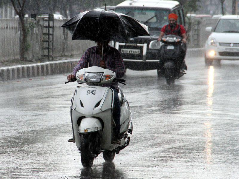 A man braving the rain in Ludhiana. JS Grewal / HT