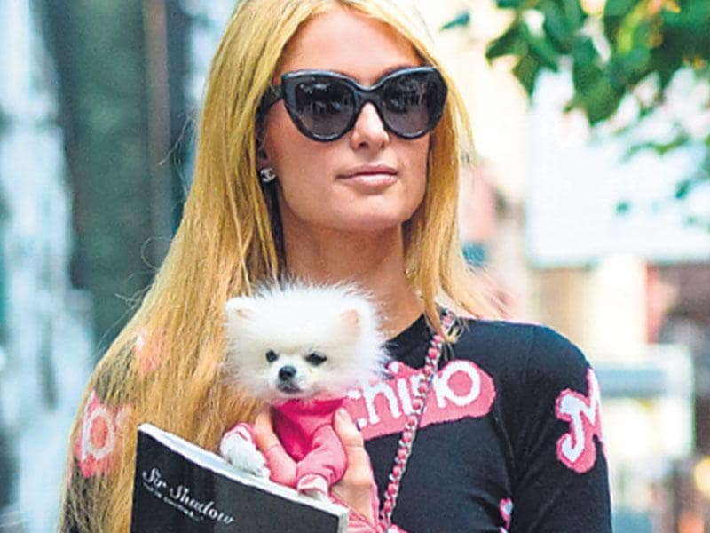 Paris Hilton with her new unnamed Pomeranian.
