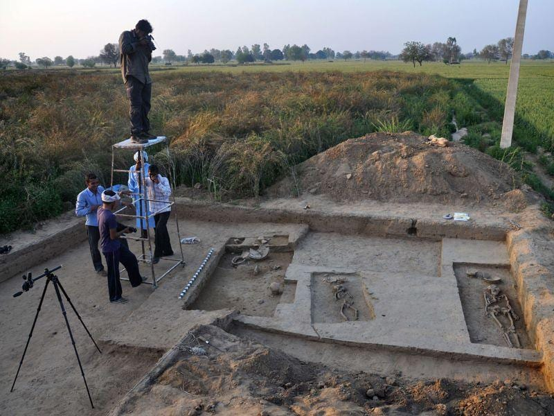 Archaeologists have found four 5000-year-old complete human skeletons from the biggest site of Harappan civilisation at Rakhigarhi village in Hisar district. AFP/PHOTO