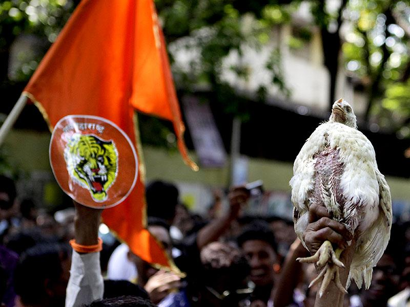Chickens were mishandled by Shiv Sena workers during the celebration of the Bandra by-poll results in Mumbai. (Kalpak Pathak/HT photo)
