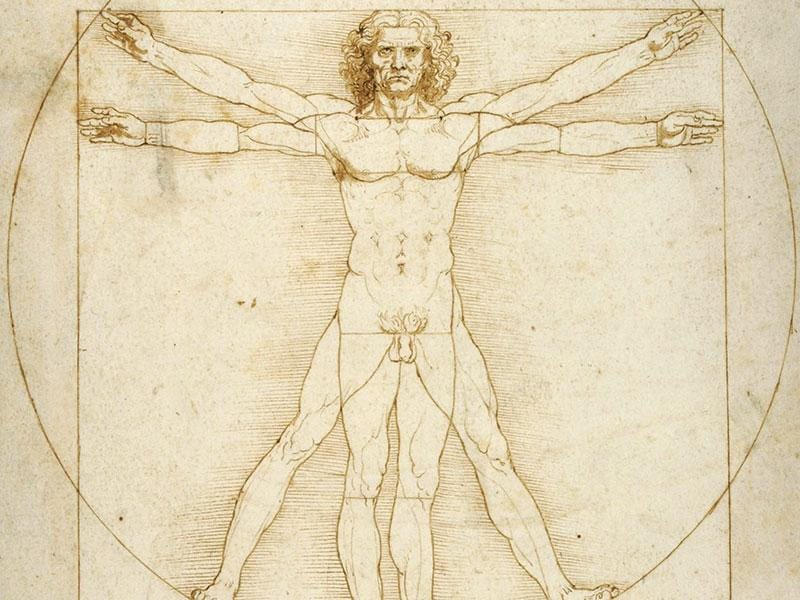 'The Vitruvian Man' (1490) Pen and ink with wash over metalpoint on paper.
