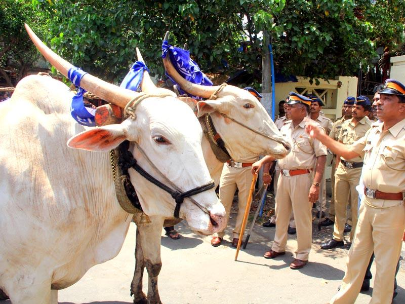 The RPI, an ally of the BJP, carried out a protest opposing the Maharashtra government beef ban outside the collector's office in Bandra. (HT photo)