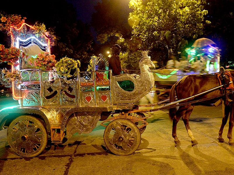 A coachman sits in a 'Victoria' - horse-drawn carriage as he waits for passengers on a road in Mumbai. Mumbai's ornate horse-drawn carriages are nearing the end of the road after the Bombay high court ruled them illegal, saying owners must wind up operations within a year. (AFP photo)