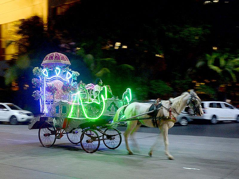 A coachman guides a 'Victoria' carriage with passengers as it travels along a road in Mumbai. The silver-coloured Victorias -- styled on open carriages used during Queen Victoria's reign -- have been plying Mumbai's streets since British colonial times, and for years have been a tourist attraction. (AFP photo)