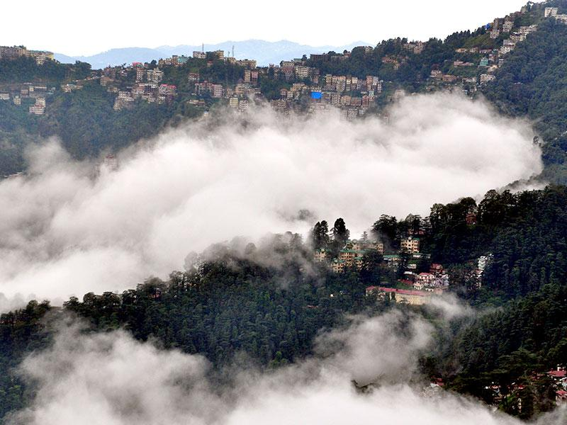 Himachal Pradesh's high altitude meant that the rain condensed to form fog; making the already scenic city of Shimla even more picturesque. (HT Photo)