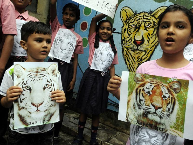 Schoolchildren take out an awareness rally to mark International Tiger Day, in Indore on Wednesday. (Arun Mondhe/HT photo)