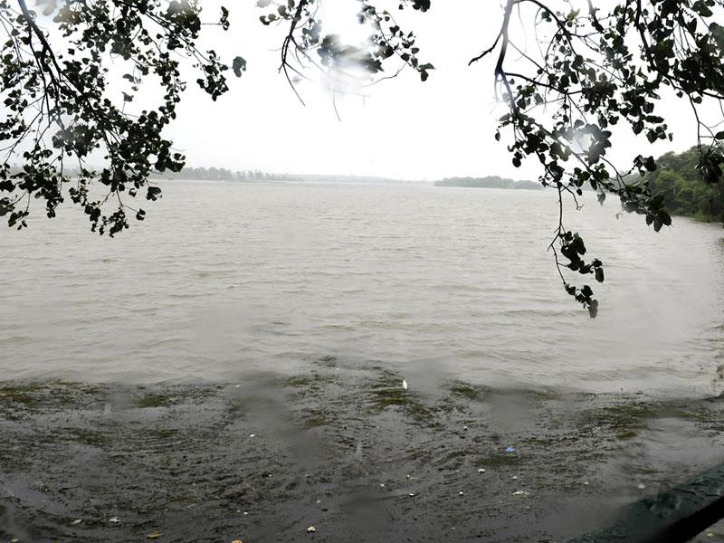 Rains increased water level in Bada Sirpur Lake to 14.9 feet in Indore on Sunday. (Shankar Mourya/HT)