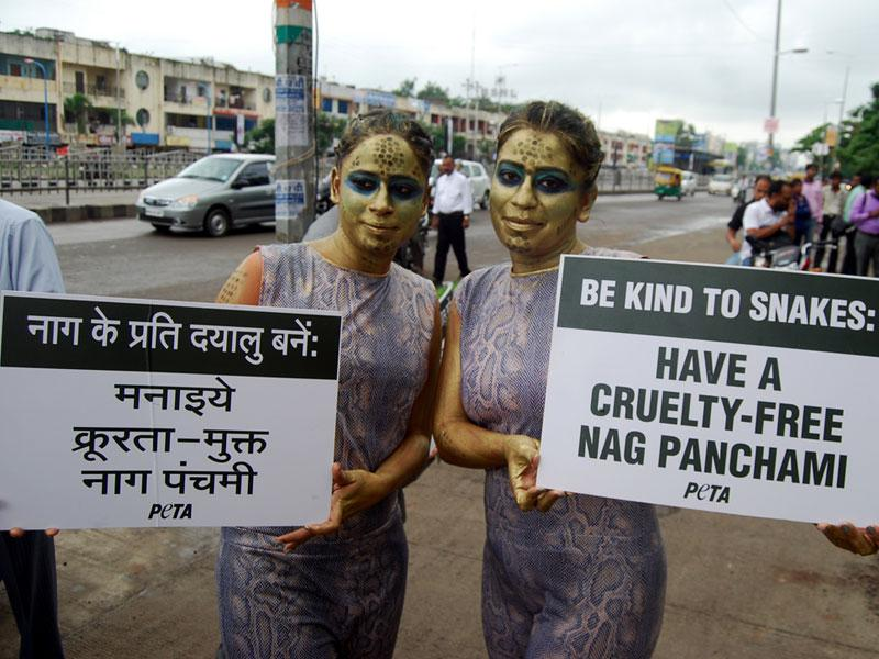 PETA activists campaigning to curb cruelty against snakes ahead of Naag Panchami, in Indore on Tuesday. (Arun Mondhe/HT photo)
