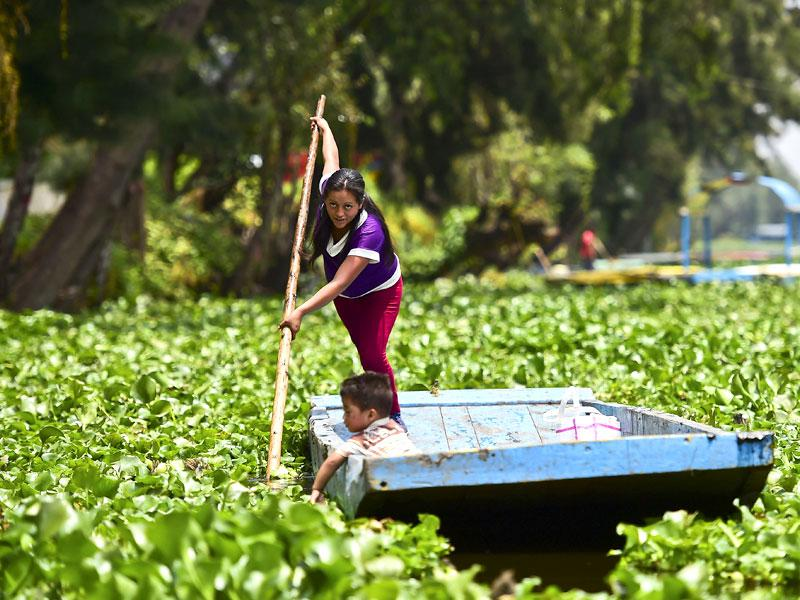 Located south of Mexico City, Xochimilco's 'chinampas' are artificial islands created by the Toltec culture 1,000 years ago for agriculture. (AFP)