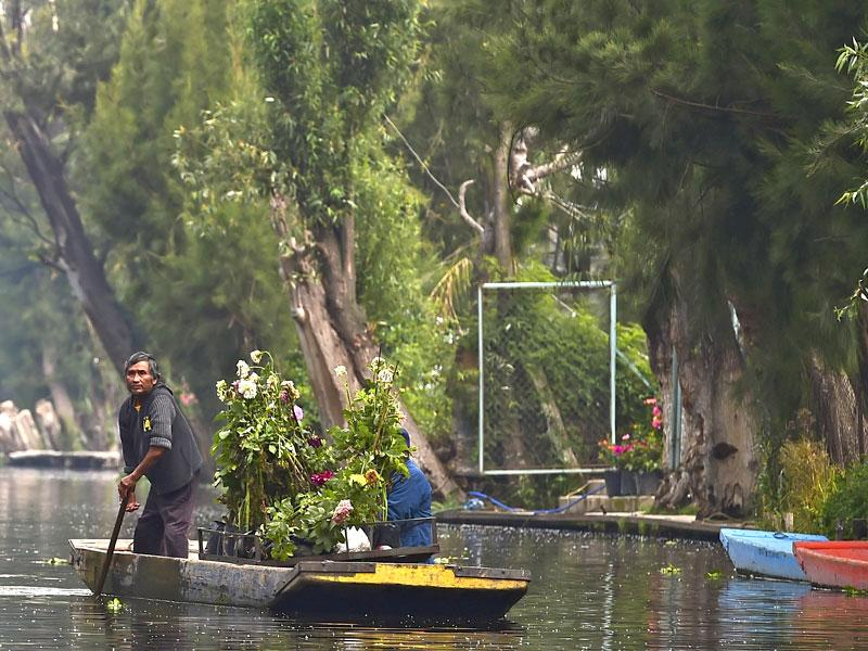 The chinampa system and its legacy from its pre-Hispanic past, has made Xochimilco a World Heritage Site. (AFP)