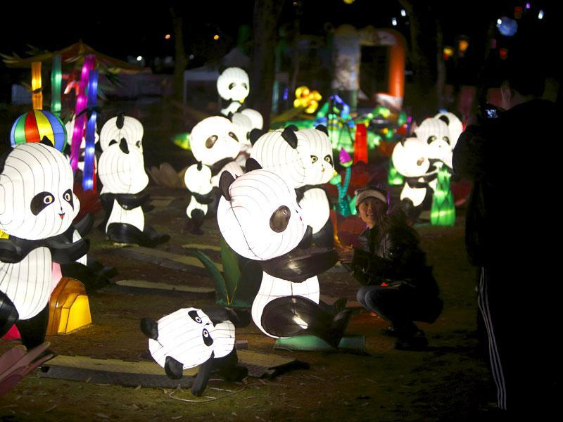 Dandenong Festival of Light has been promoted by an organisation called Chinese Culture Works.  (Reuters)