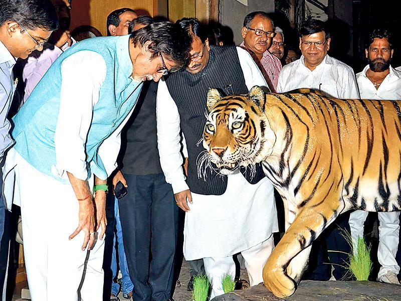 A tiger sculpture caught Amitabh Bachchan's attention, as he met the Maharashtra forest minister Sudhir Mungantiwar (standing next to Bachchan in the photograph) to discuss his role as the state's tiger ambassador. (Photo: Yogen Shah)