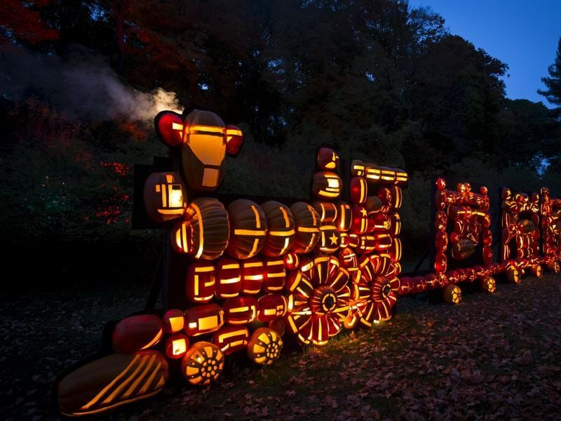 A train made of hand-carved pumpkin Jack O' Lanterns is displayed on the grounds of  Van Cortlandt Manor House and Museum during the Great Jack O' Lantern Blaze in New York October 27, 2015.  (REUTERS)
