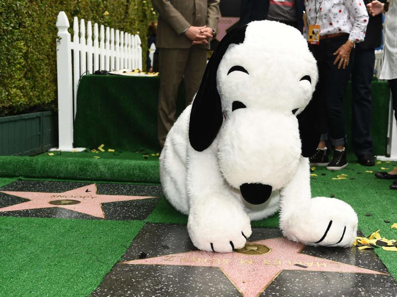 Snoopy visits the star of his creator Charles M Schulz during the unveiling ceremony for Snoopy's star on the Hollywood Walk of Fame. (AFP)