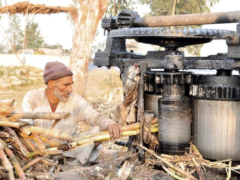 Jaggery is prepared by extracting sugarcane juice through a crusher which is then collected in a big vessel. (Pardeep Pandit/HT Photo)