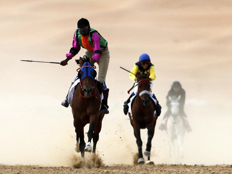 Jockeys compete in a race for purebred Arab horses during the festival.  (AFP)