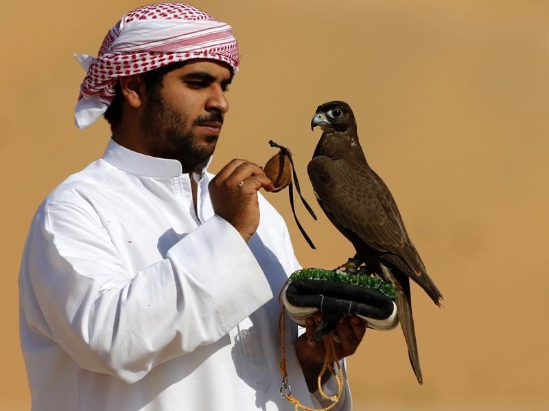 An Emirati falconer prepares to train his bird during the festival. The Moreeb Dune, one of the highest sand hills in the world, has an altitude of about 300m, with slopes of up to 50 degrees. (AFP)