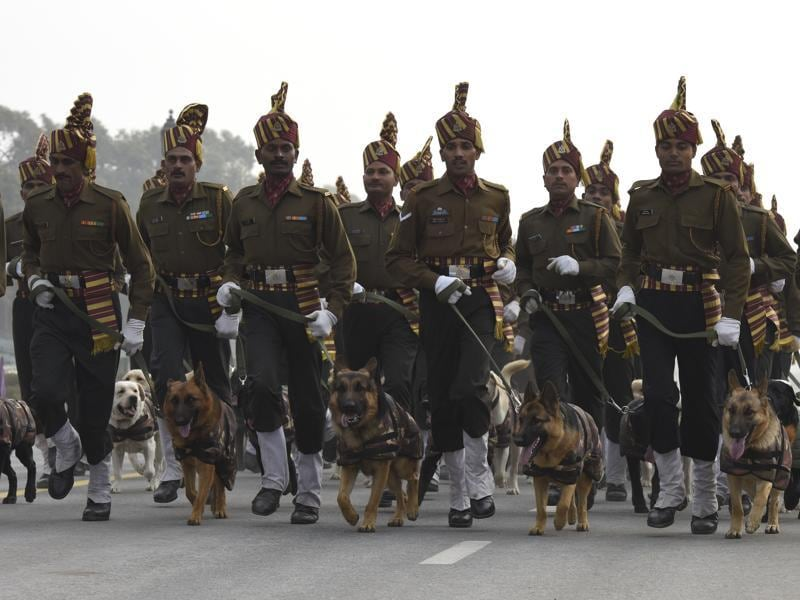 Indian Army's Remount and Veterinary Corps (RVC) dogs trained for bomb disposal and counter-insurgency take part in the rehearsal for the Republic Day parade at Rajpath in New Delhi. (Arvind Yadav/HT)