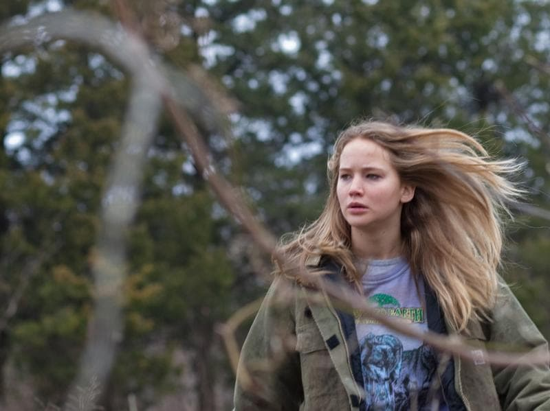 Winter's Bone (2010). Lawrence played Ree Dolly, a girl in search of her addict father in the meth-riddled Ozarks.