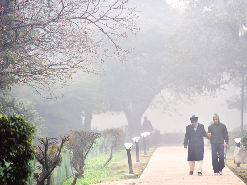 Walk for health in 'unhealthy' air: People take a walk in a park as the Capital wakes up to heavy fog and low temperature. (Saumya Khandelwal/ HT Photo)