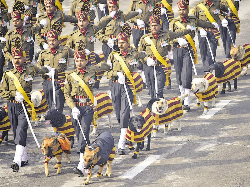The dog squad marches past during the full dress rehearsal for the 67th Republic Day parade at Rajpath in New Delhi. (Vipin Kumar/HT Photo)