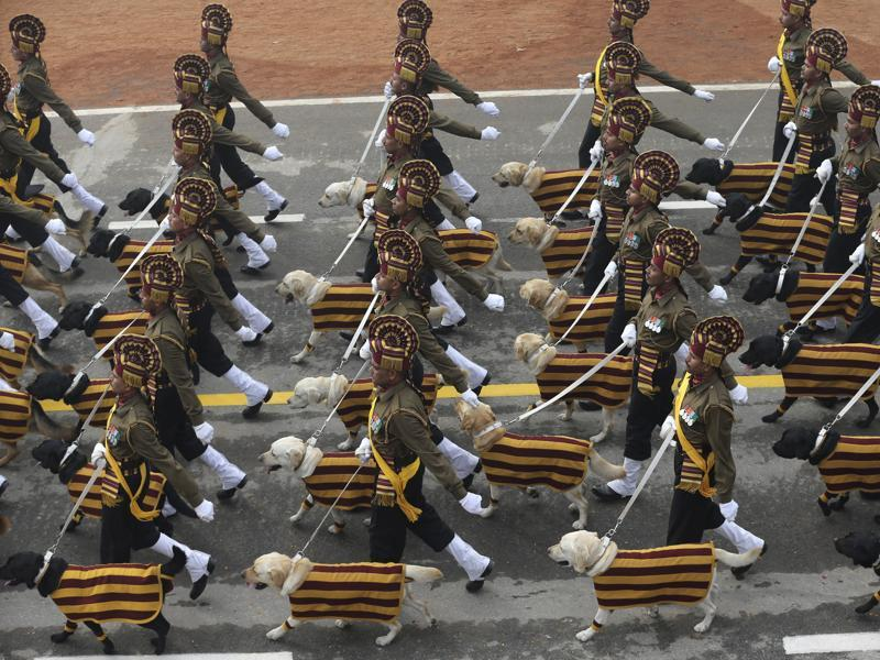 Indian Army's dog squad marches down Rajpath during the Republic Day parade in New Delhi. (AP Photo)