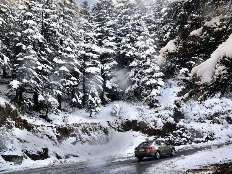 A vehicle crossing the snow covered pine trees at Kufri after heavy snowfall in Shimla. (Deepak Sansta/HT Photo)