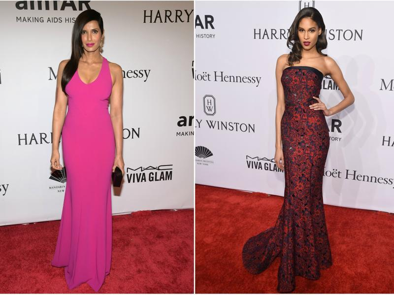 Models Padma Lakshmi and Cindy Bruna grace the red carpet for the amfAR rally in elegant gowns. (AFP/)