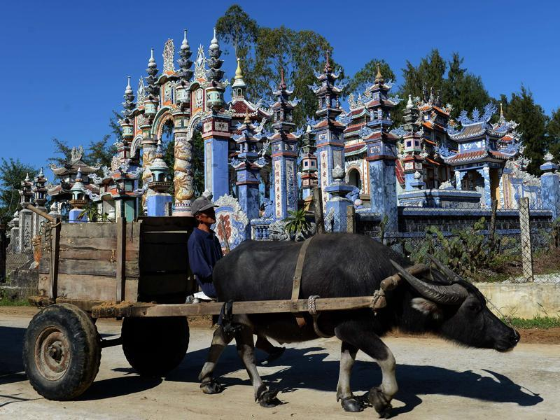 A buffalo-pulled cart moving past large tombs at the cemetery in An Bang. Local fishermen are taking the tomb tradition into the 21st century by pouring in up to $70,000 to make elaborate resting places for their kin.  (AFP)