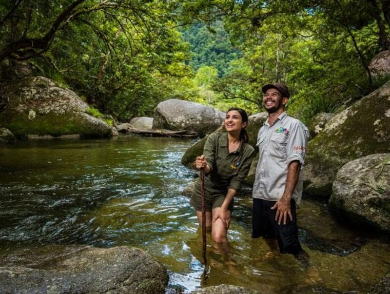 Do you also want to visit Mossman Gorge, Queensland? (Twitter)