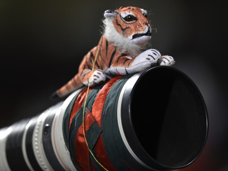 Bangladesh photographer put Teddy Tiger on his camera lens to show support for his national team during T20 World Cup league match. (Vipin Kumar/HT Photo)