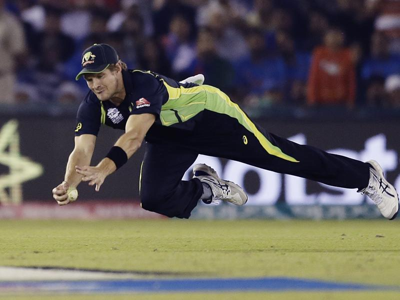 Australia's Shane Watson takes an excellent diving catch to dismiss India's Yuvraj Singh. (AP)