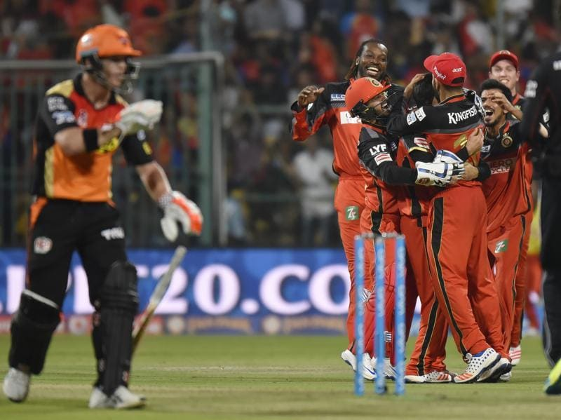 Royal Challengers Bangalore players celebrate the wicket of Shikhar Dhwan (unseen) as David Warner watches. (Ravi Choudhary/HT Photo)