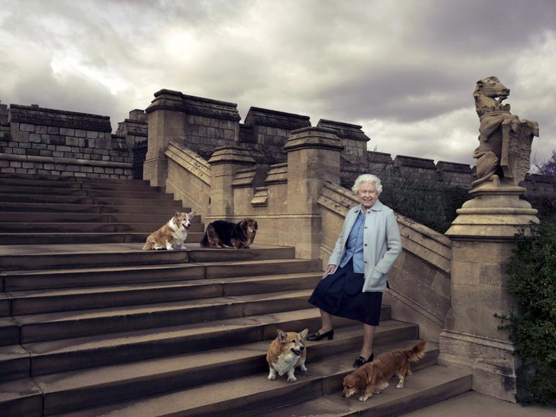 Britain's Queen Elizabeth II is seen walking in the private grounds of Windsor Castle on steps at the rear of the East Terrace and East Garden with four of her famous corgis. (REUTERS)