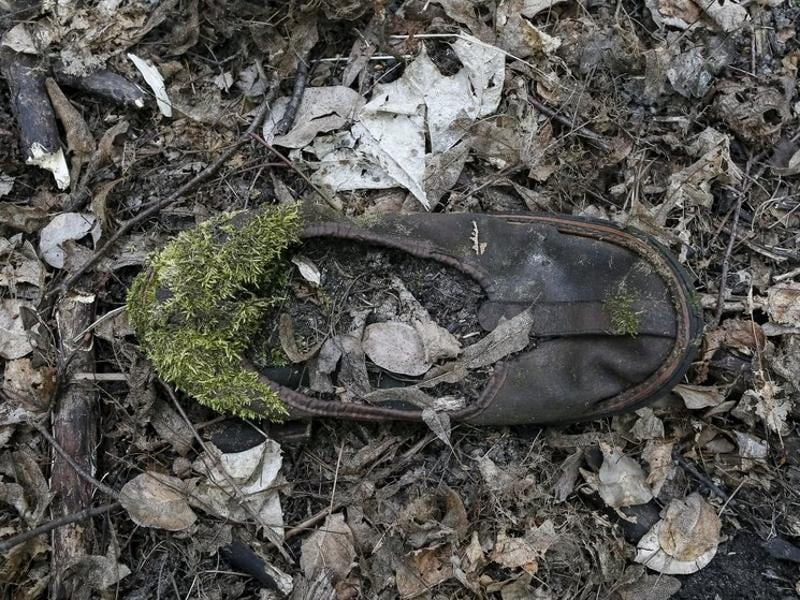 Moss is seen growing on a child's slipper in the ghost town of Pripyat. 50,000 residents had to flee following the explosion in 1986. None have returned. (REUTERS)